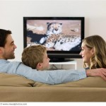 TV Still a Top Pastime for Americans