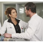 What to Expect from the Private Practice Finale